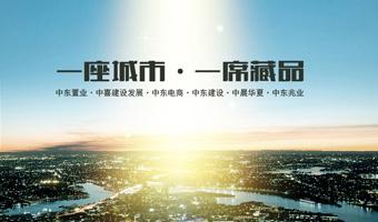 中东集团新宝gg手机登录建设项目